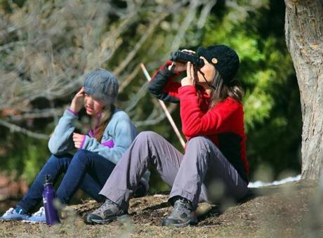 Amy Roberts and her daughter Ali, 12, did some bird-watching at the Arnold Arboretum.
